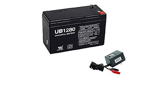 (Universal Power Group 12V 8AH Replacement for SeaDoo Dolphin ZS2B ZS4B Battery with Charger)