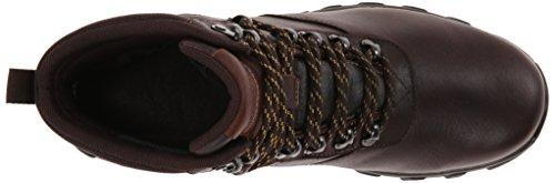 Rockport Mænds Kolde Fjedre Plus Almindelig Tå Støvler - 7 Øje Chokolade Læder Glat 11 M (d) TgCXb