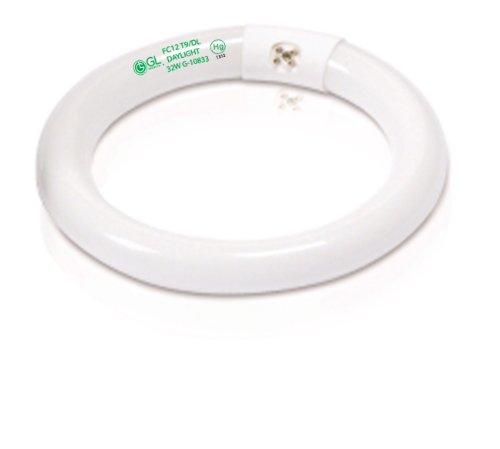 Goodlite G-10833 32W T9 Circline 12-Inch Wide Fluorescent Tube Light Bulb, G10Q Base, Daylight 6500k