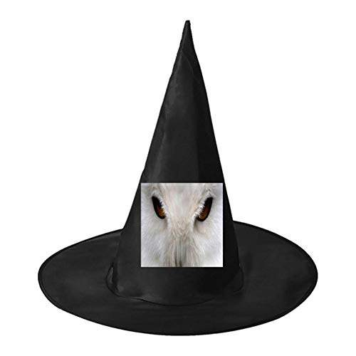 White Owl Face Unisex Halloween Witch Role Playing Wizard Hat for Costume -