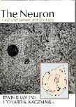 The Neuron: Cell and Molecular Biology