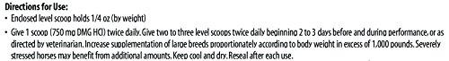 Vita Flex DMG 3000 Concentrate, 128 Day Supply, 4 lbs by Vita Flex (Image #3)