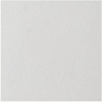 Usg 4290 12 X White Smooth Wood Fiber Tongue Groove Ceiling Tile Quantity 30