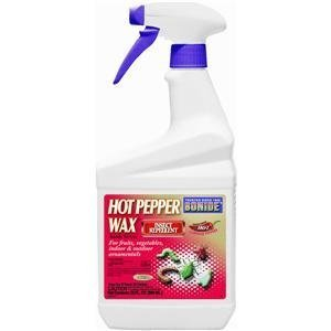 - Hot Pepper Wax Insect Repellent Ready To Use