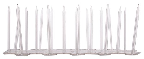 PolyeRubb Industries Polycarbonate Bird Spikes-Big(Set of 10 Pc)