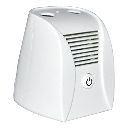 - Air Purifier, ETTG Mini Air Ionizer With Ozone and Negative Ions Portable Air Cleaner Remove Smoke and Bad Odors