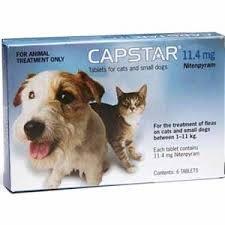 Capstar zur Behandlung von Flohbefall bei Hunden und Katzen zwischen 1 und 11kg, gut verträglich und kombinierbar, Spar-Set 3