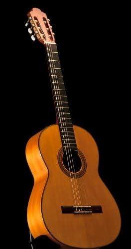 Francisco Navarro Flamenco Guitarra: Amazon.es: Instrumentos musicales