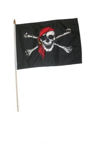 Pirate Skull & Cross Bones With Red Bandana 12