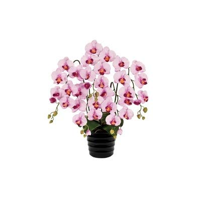 人工観葉植物 ピュアオーキッド5本立(ファレノ)ラベンダー 光触媒加工 高さ72cm zv6500b (代引き不可) インテリアグリーン 造花 B07SYH6PW3