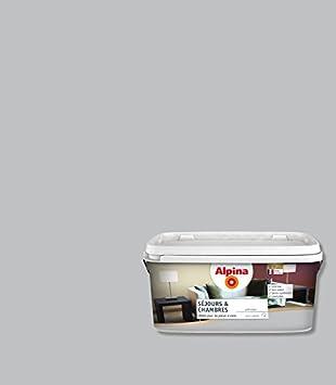 ALPINA Spezial Wandfarbe Für Wohn  Und Schlafräume, Grau, 848690