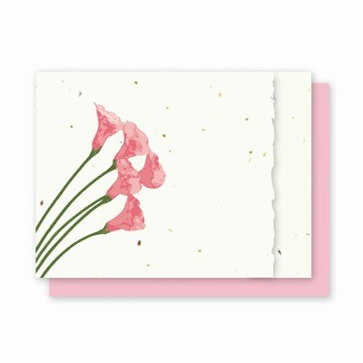 (Grow A Note® Calla Lily with Deckle Edge Cards)