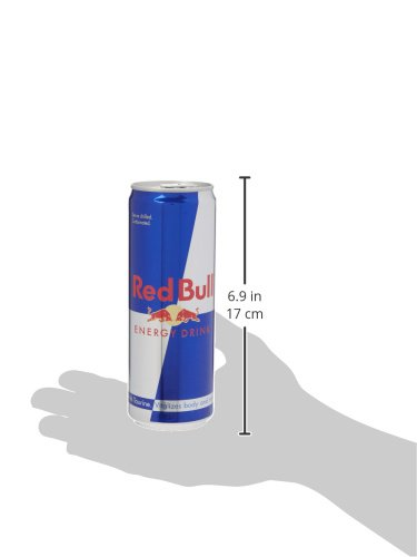Red Bull Energy Can 4 X 250ml Pack Of 6 Total Of 24 Cans Buy Online In Botswana At Botswana Desertcart Com Productid 65151112