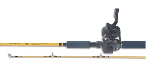 Eagle Claw Troll Combo Rod and Reel Level Wind (2 Piece)
