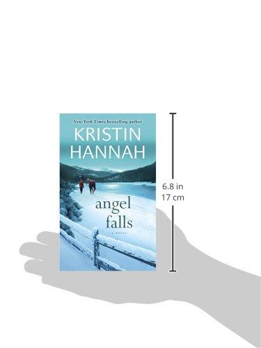 Angel-Falls-A-Novel