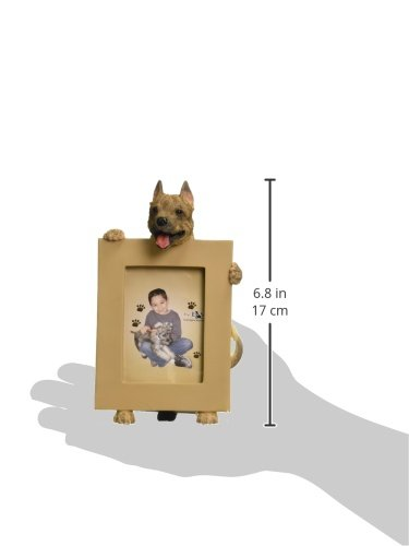 Pit Bull, Cropped Picture Frame Holds Your Favorite 2.5 by 3.5 Inch Photo, Hand Painted Realistic Looking Pit Bull Stands 6 Inches Tall Holding Beautifully Crafted Frame, Unique and Special Pit Bull Gifts for Pit Bull Owners by E&S Pets