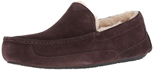 UGG Men's Ascot Slipper, Espresso, 14 M US ()