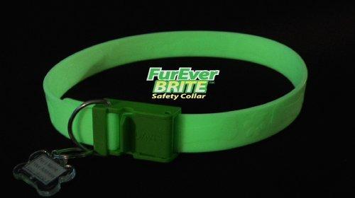 FurEver Brite Glow in the Dark Pet Safety Collar – Medium to Large, My Pet Supplies