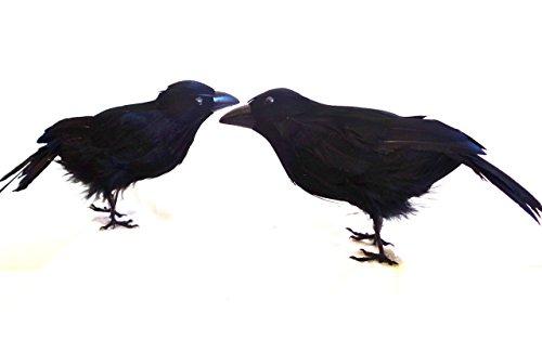 Halloween Crows, 7