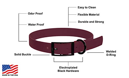 310Gw5mk%2B1L - Biothane Waterproof Dog Collar