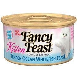 Fancy Feast Gourmet Kitten Formula Tender Ocean Whitefish Feast Canned Cat Food (24/3-oz cans), My Pet Supplies