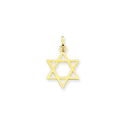 ICE CARATS 14k Yellow Gold Jewish Jewelry Star Of David Pendant Charm Necklace Religious Judaica Fine Jewelry Ideal Mothers Day Gifts For Mom Women Gift Set From (Designer Star Of David Necklace)