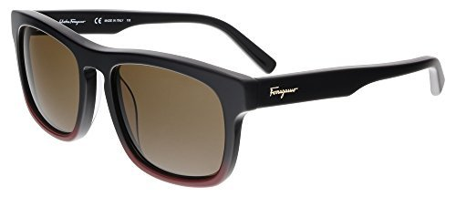salvatore-ferragamo-sf789s-012-55mm-black-burgundy-brown-sunglasses