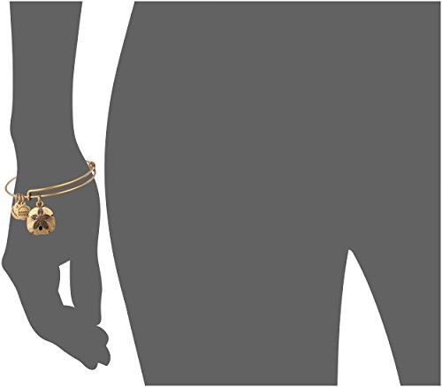 Alex and Ani Sand Dollar II Expandable Rafaelian Gold Bangle ...