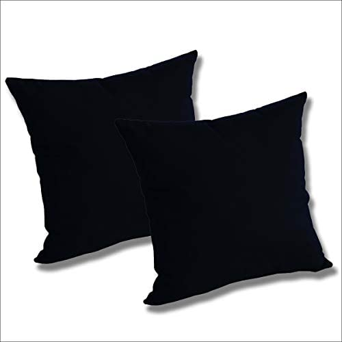 Comfort Classics Inc. Set of 2 Sunbrella Outdoor/Indoor Throw Pillows Raven Black