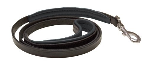 Perri's Leather 1/2-Inch Black with Black Skinny Padded Leather Dog Leash, 5-Feet