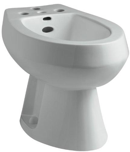 White Vertical Spray Bidet (KOHLER K-4854-95 San Tropez Bidet, Ice Grey)