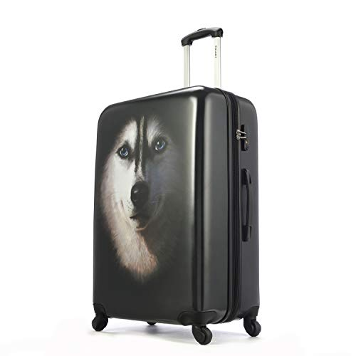 Travel Bag Chariot (Chariot Luggage 3 Pieces Set with TSA Lock Expandable Suitcase with Spinner Wheels 20