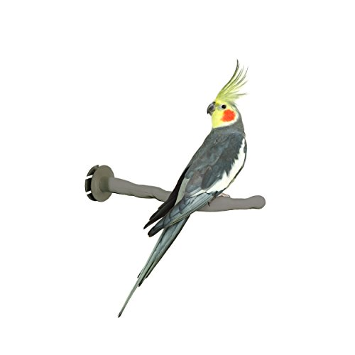 K&H Pet Products Thermo-Perch Heated Bird PerchSmall Gray 1