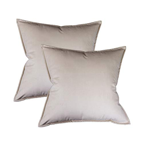 Original Pro Pack of 2 Decorative Throw Pillow Covers, Velvet Soft Soild Square Pillow Cover Throw Cushion Case Decorative Pillowcase for Sofa Bedroom Car 18 x 18 Inch Champagne