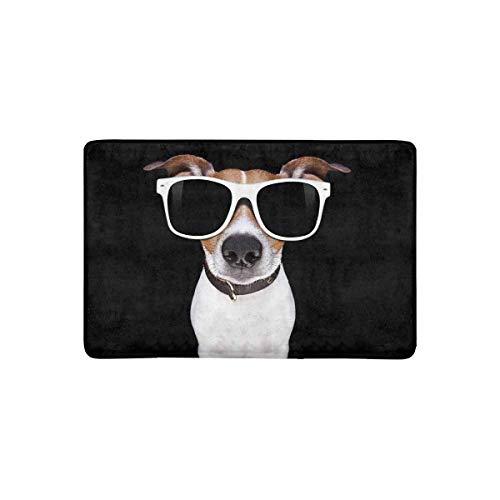 InterestPrint Funny Jack Russell Terrier Puppy Dog Doormat Anti-Slip Entrance Mat Floor Rug Indoor/Outdoor/Front Door Mat Home Decor, Rubber Backing 23.6