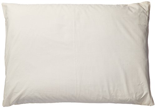 Natures Pillows Sobakawa Buckwheat Pillow With Free Pillow Protective Cover, 19' x 29'