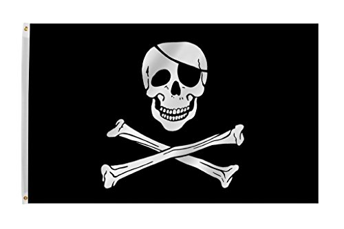 (Time Roaming 3x5 Ft Jolly Roger Pirate Skull and Crossbones Polyester Flag with Brass Grommets)