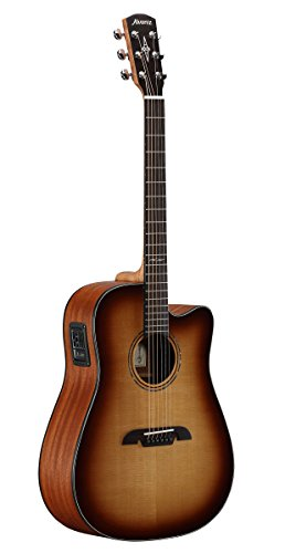 tist Series Guitar ()