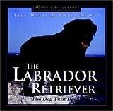 Labrador Retriever - Dog That Does It All