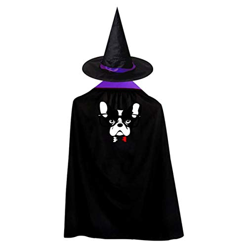Halloween Children Costume Boston Terrier Face Wizard Witch Cloak Cape Robe And Hat Set -
