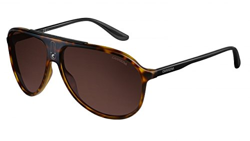 Carrera 6015/S Sunglass-0N62 Havana Black (8U Dark Brown - Sunglasses Authentic Carrera