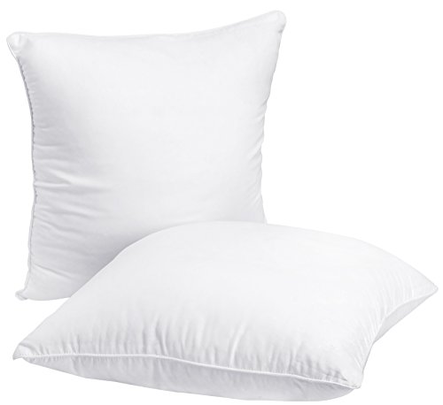 Why Should You Buy Utopia Bedding Decorative Pillow Insert (2 Pack, White) - Square 18x18 Sofa and B...