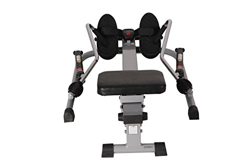 Sunny Health & Fitness SF RW5619 12 Level Resistance Rowing Machine Rower w/ Independent Arms