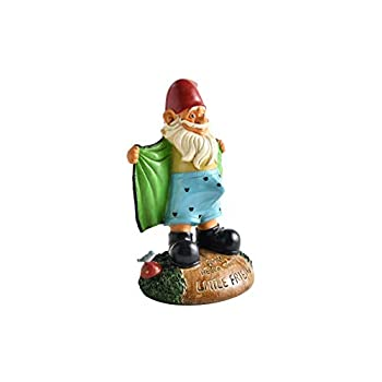 Noa Store Perverted Garden Gnome Figure: Gnome Flashes Greeting