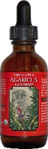 AMAZON THERAPEUTIC LABORATORIES Agaricus Sun Supreme Certified Organic 4 OZ