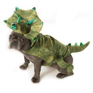 [Pet Halloween Dinosaur Dog Costume Green Triceratops Large] (Triceratops Halloween Costume)