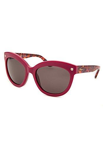 71fc34f662c Amazon.com  Salvatore Ferragamo SF675S-512-55 Sunglasses