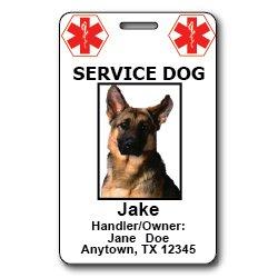 Custom Service Dog ID Cards, My Pet Supplies