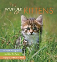 The Wonder of Kittens