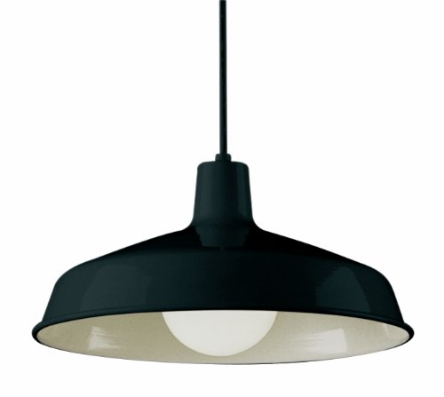 Trans Globe Lighting 1100 BK Indoor Sherman 15.5 Pendant, Black